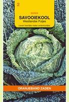 Oranjeband Savooiekool Putjes Brassica oleracea - Kool - 5gram