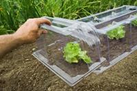 Nature Kweektunnel Eindstuk modulair - Broeikas - Transparant