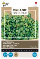 tuincentrumkoeman Organic Sprouting Mosterd kers - Buzzy