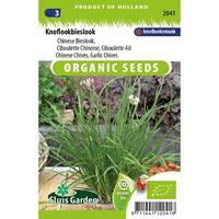 Chinese knoflookbieslook Allium tuberosum BIO