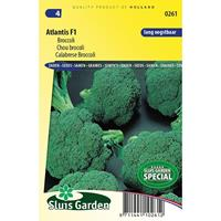 Broccoli Atlantis F1