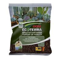 Ecoterra cactus en vetplanten potgrond - 2,5 L