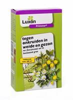 Bloembollenkopen Primstar Onkruidbestrijding in weide en gazon 40 ml - Luxan (1 stuks)