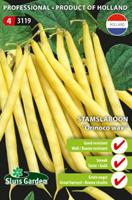 Zadenkopenonline Stamslaboon Orinoco wax - Phaseolus