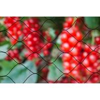 Tuinnet Primo Zwart Maaswijdte 28x28mm 12 G/m2 10x4m