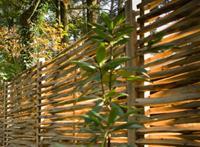 Intergard Kastanjescherm gespleten tuinschermen vlechtscherm 180x180cm