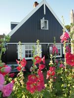 B&B In Het Tuinhuis - Nederland - Noord-Holland - Marken