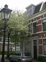 B&B Apartment Kanne - Nederland - Utrecht - Utrecht
