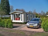 Specht - Nederland - Drenthe - Zorgvlied