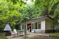 Boshuis het Eekhoorntje - België - Limburg - Lanklaar- 4 persoons