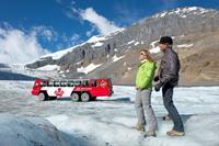 Ice Explorer Glacier Tour & Glacier Skywalk