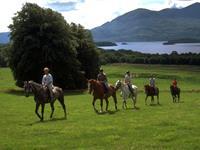 Paardrijden vanuit Killarney