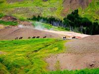 Paardrijden vanuit Hveragerði
