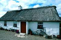 22-Daagse autorondreis Ierlands Wild Atlantic Way - vakantiewoningen