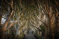 8-Daagse autorondreis Game Of Thrones Noord Ierland