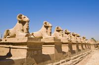Nijlcruise 5*&Sentido Mamlouk Palace 5* - Egypte - Luxor - Nijlcruise