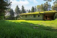 Vrijstaand vakantiehuis in Blokhus in een natuurgebied