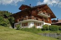 Luxe chalet met privétuin in Habkern, Zwitserland