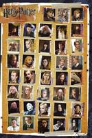 Harry Potter 7 Characters Poster 61x91,5cm