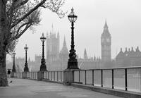 London Fog Fotobehang 366x254cm
