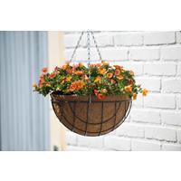 Nature Hanging Basket H17xØ35cm