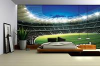 Walltastic Voetbalstadion Fotobehang L