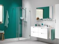 Getwetbysealskin Get Wet by Sealskin I Am Vast deel voor inloopdouche type A1 30x200cm RVS-look/Helder glas