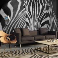 Fotobehang - Zebra , zwart wit