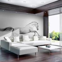 Fotobehang - Paard in Galop , zwart wit