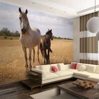 Fotobehang - Paard en Veulen , beige bruin