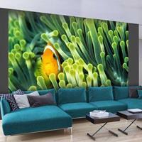 Fotobehang - Vis , oranje groen