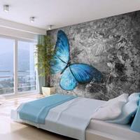Fotobehang - Vlinder in rust , grijs blauw