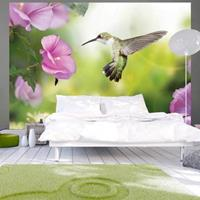 Fotobehang - Kolibrie met paarse bloem , roze groen