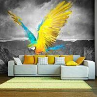 Fotobehang - Papegaai , blauw geel