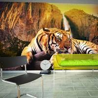 Fotobehang - Tijger , multi kleur