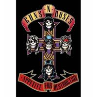 Poster Guns N Roses Appetite for Destruction 61 x 91 cm