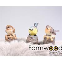 Eigen merk Farmwood Animals Vogel met muziek 9x6x10 cm