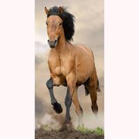 Animal Pictures Paard Strandlaken 70 x 140 cm