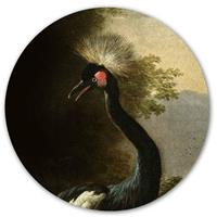 "Groovy Magnets "" Majestic Crane Magneetsticker """