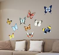 tenstickers Verschillende vlinders sticker