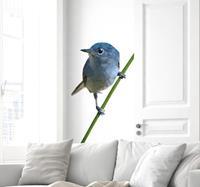 tenstickers Levensechte Vogel Muursticker