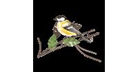 Clayre & Eef Flessenhouder met vogel 21x12x16 cm