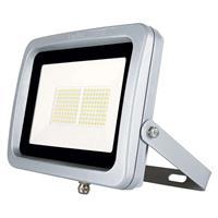 Ledino LED schijnwerper Buckow 100 in vlakke vorm