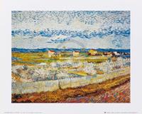 PGM Vincent Van Gogh - Pesco in fiore Kunstdruk 30x24cm
