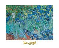 PGM Vincent Van Gogh - Iris Kunstdruk 30x24cm