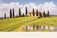 PGM Jim Chamberlain - Tuscan Hillside #5 Kunstdruk 91x61cm
