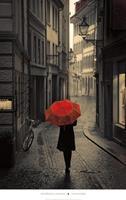 PGM Stefano Corso - Red Rain Kunstdruk 61x96cm