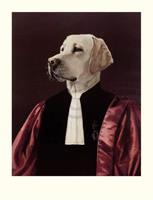 PGM Thierry Poncelet - The Advocate Kunstdruk 66x86cm