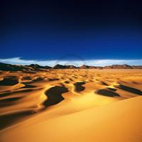 PGM Michael Martin - Die Wüsten der Erde Kunstdruk 98x98cm