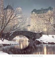 PGM Rod Chase - Twighlight in Central Park Kunstdruk 76x81cm